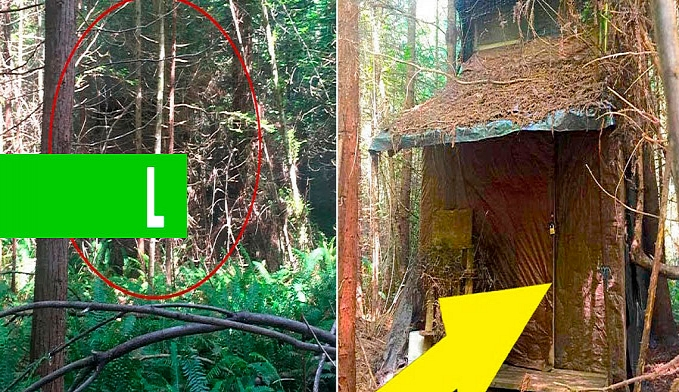 11 CASAS ABANDONADAS MAIS INSANAS DO MUNDO