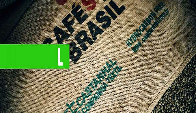 CASTANHAL É DESTAQUE NA SEMANA INTERNACIONAL DO CAFÉ 2019